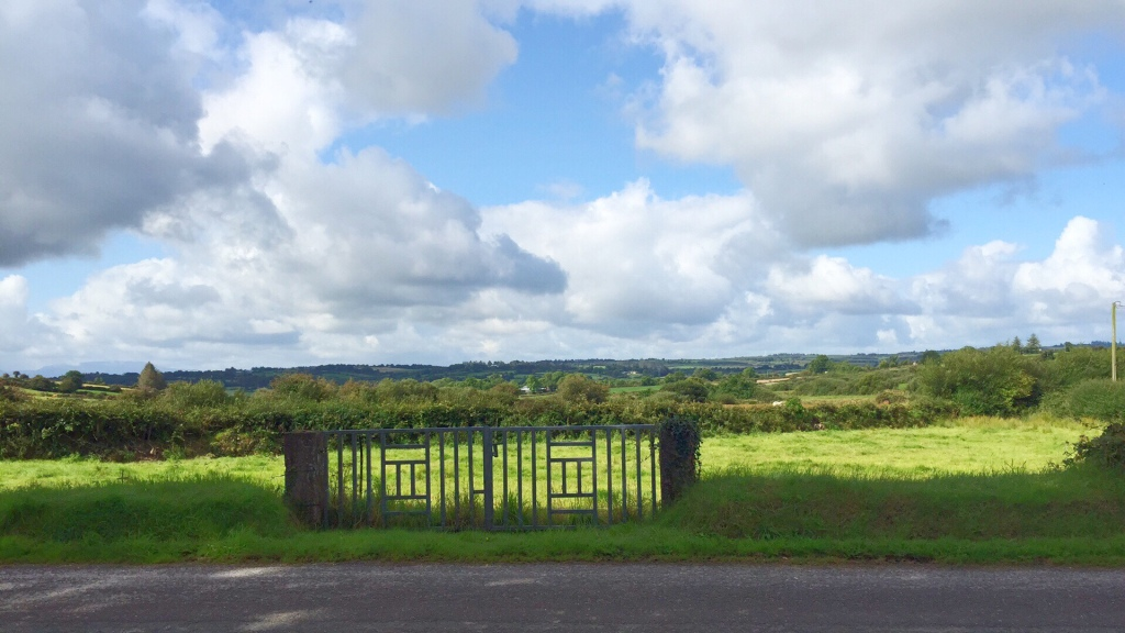 View of rural Ireland from a road.